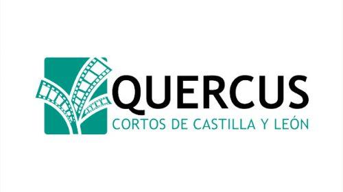 quercus-cyl-destacada