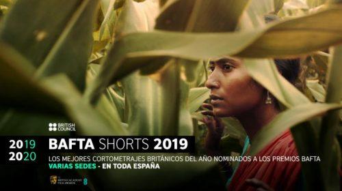 solas-bafta-2019-2020